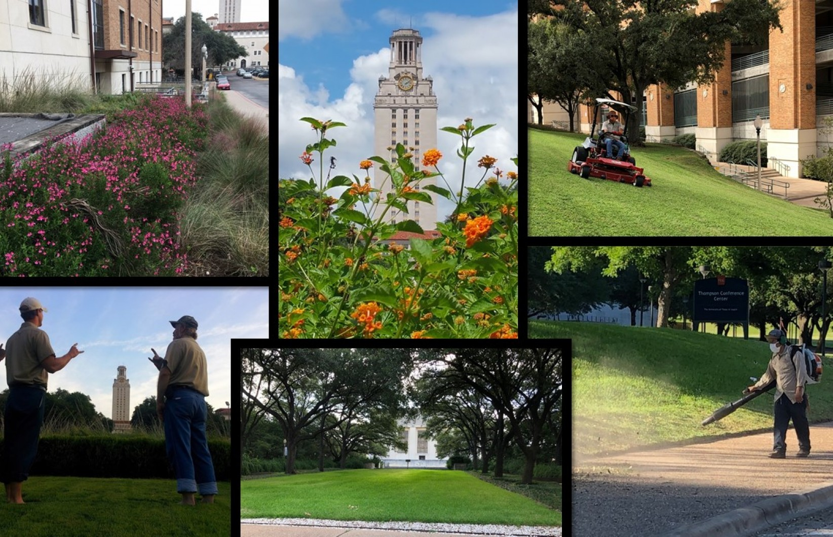 Image collage of the landscape on Main Campus