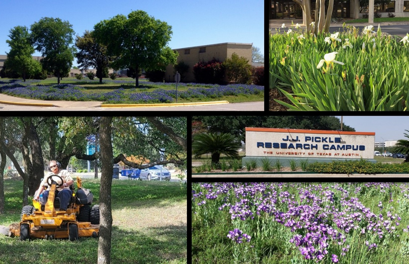 Image collage of the landscape at JJ Pickle Research Campus