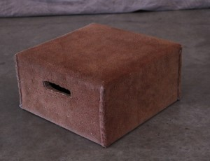 Conductor / pedestal box